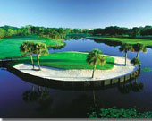 Bird Golf Academy - Florida